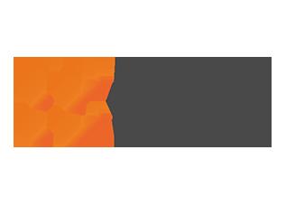 Logo FRISS